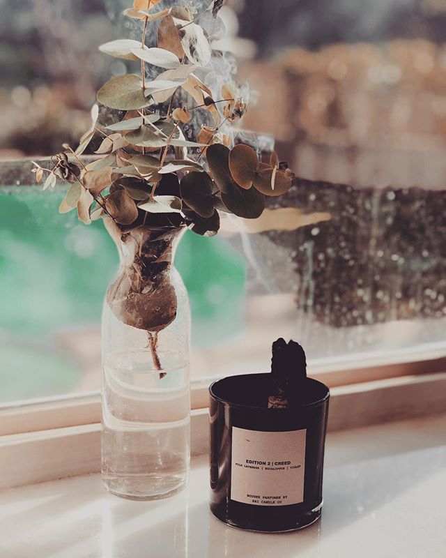 Candle+ sage+eucalyptus- life is good 🍃🌱🕯🧘♀️ #peaceful
