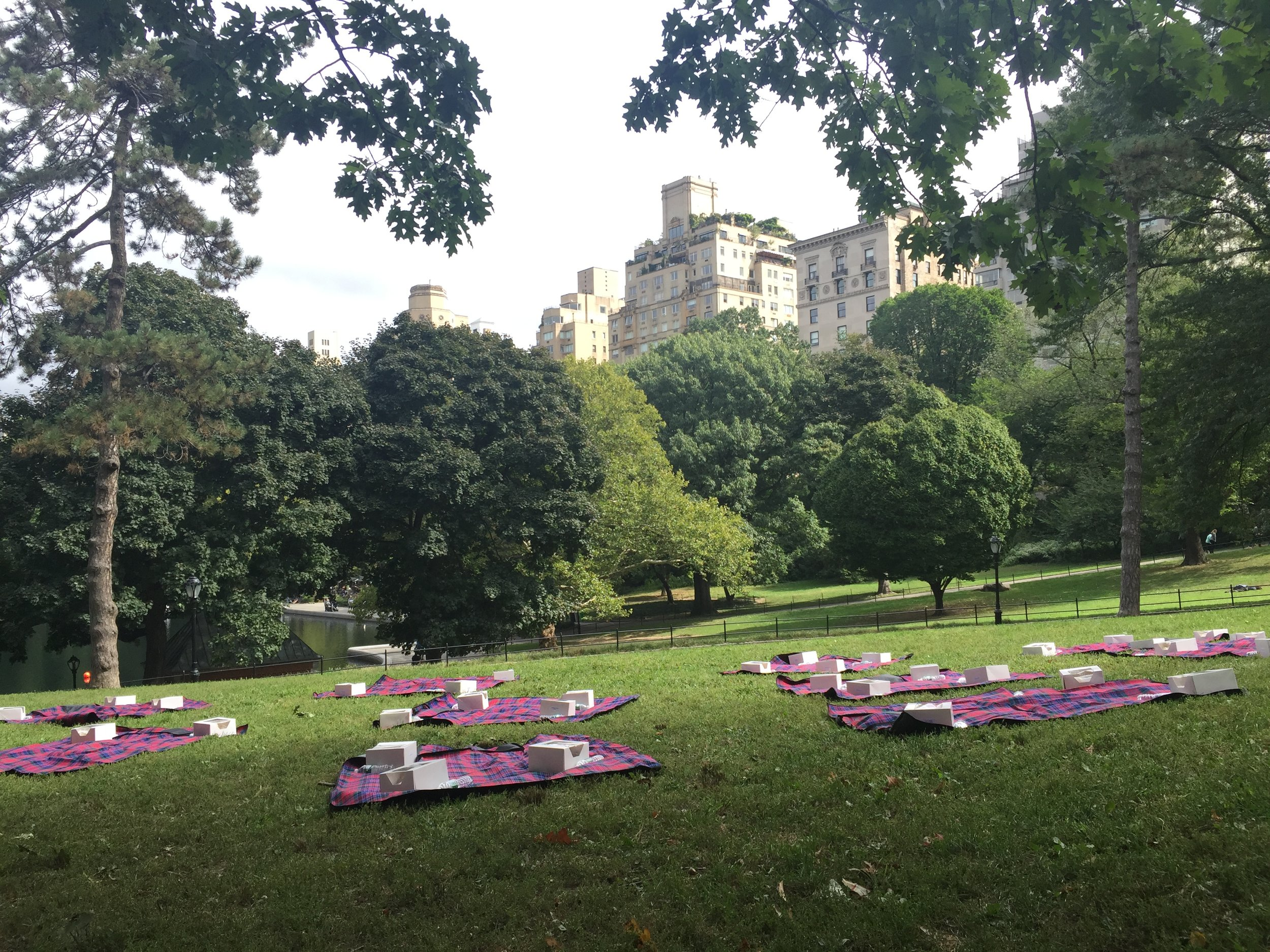 Picnic lunch, NYC