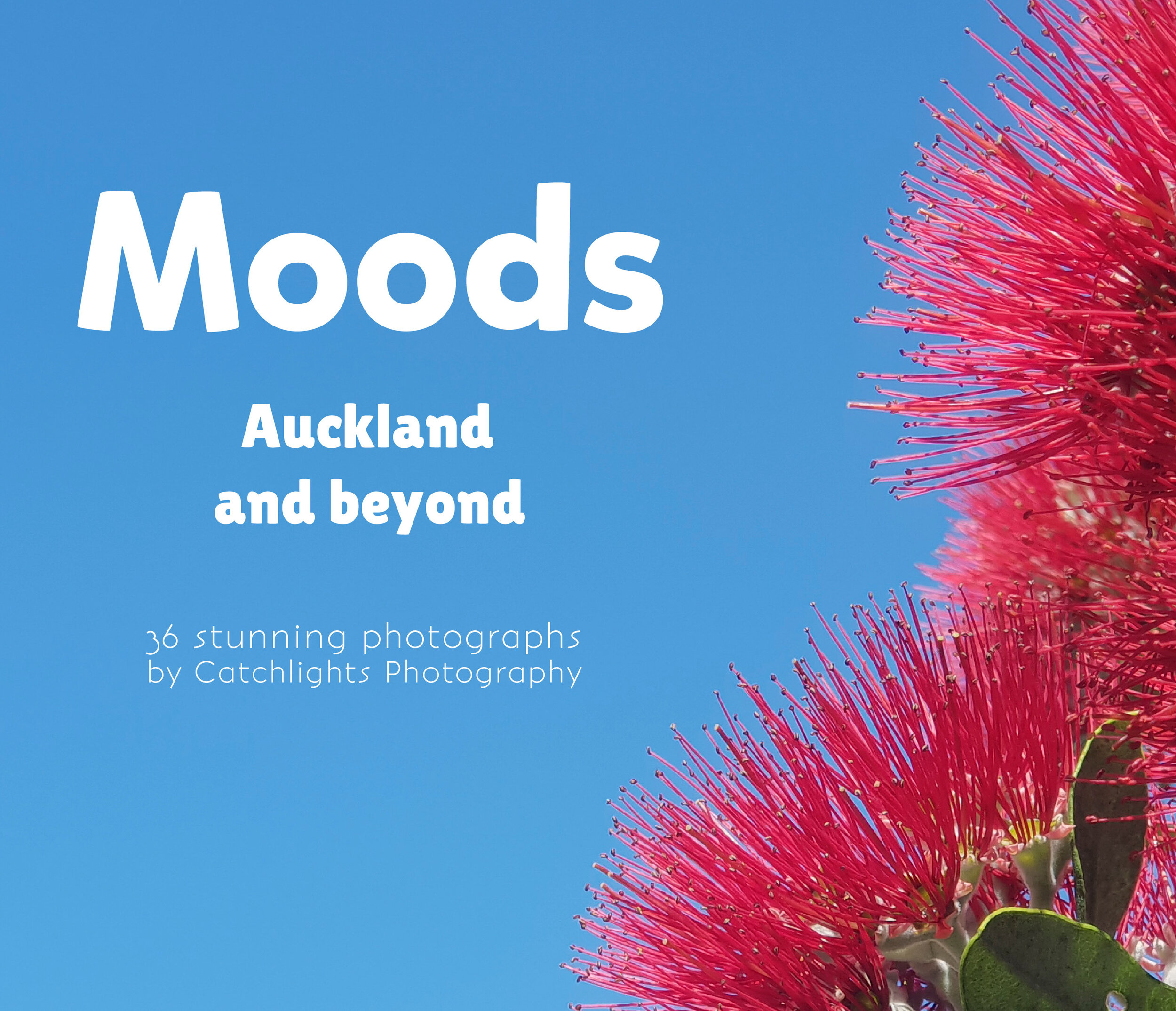 Mood - Auckland & Beyond - Photography Front Cover.jpg
