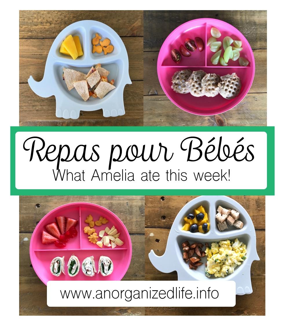 Repas-pour-bebe.jpg
