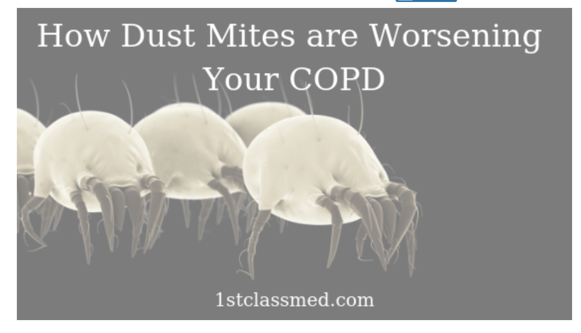 Dust Mites: 101 - How Dust Mites are Worsening Your COPD!