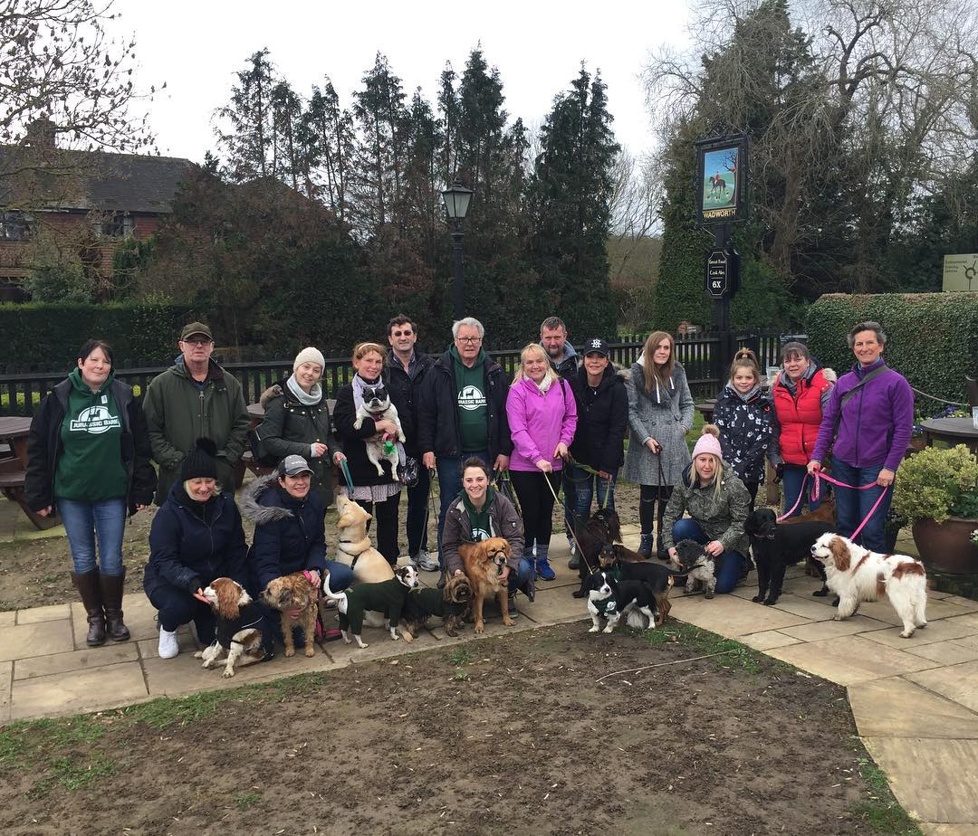 Pack Walk March 2019