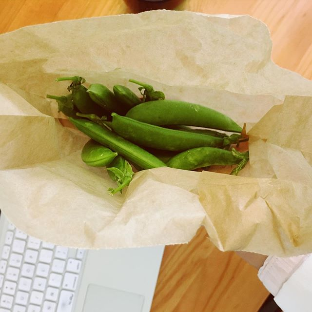I've been using #plasticfree waxed paper bags in my house for many years now and generally avoid plastic. Snap peas from the farmers market featured here. Last night I saw the movie BLUE with a dear friend @dr.marissa.nd who is also doing so much to bring awareness about plastic use, presented by @saveourshores (see story). What a heart wrenching situation we've created for ourselves and the creatures living in and off of the oceans. Trash and micro plastics are filling our oceans and the bellies of the animals that live there. I am vowing to do better. Some action steps: #1 - demand less plastic from corporations (packaging,etc.) #2 - pick up 3 pieces of garbage from the beach and other waterways every time you go #3 - vote for politicians who support the environment #4 - use less plastic in your life (buy in bulk, from the farmers market, wood/glass/natural fiber homewares). #oceanguardian #worldoceansday #naturopathicmedicine #healthyfamilies #minimalism #naturalfood #ecofriendly #wellness #healthyliving #allnatural