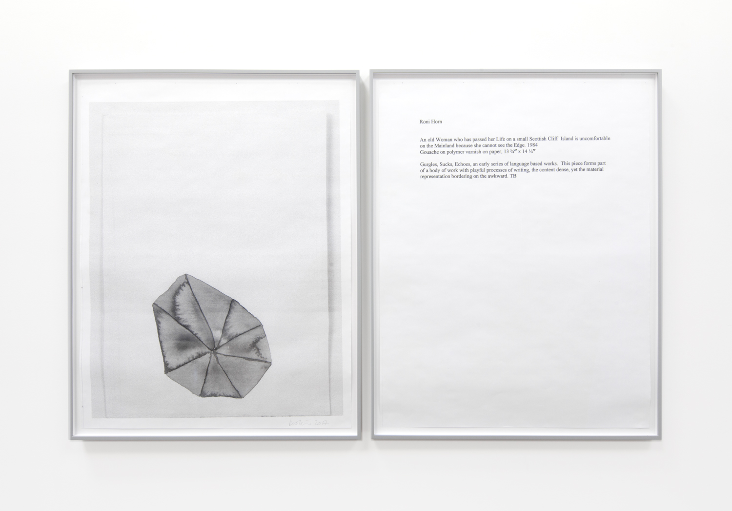 One Work with Footnote (Roni Horn)   2015-2017 diptych; hybrid prints edition 1 of 1 36 x 29 inches each