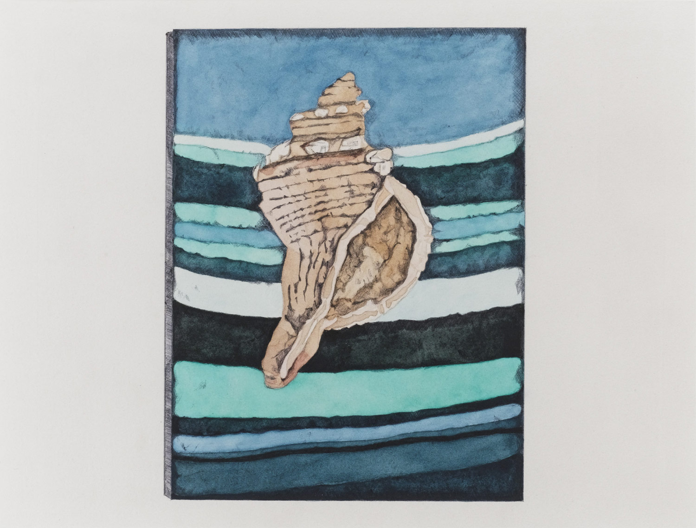Sea Shell Art in Acrylics 2011
