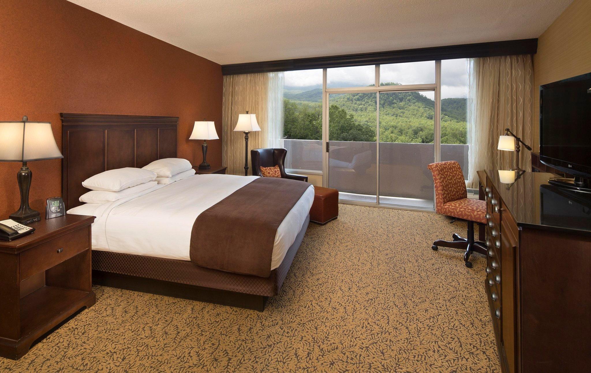 park-vista-hotel-room.jpg