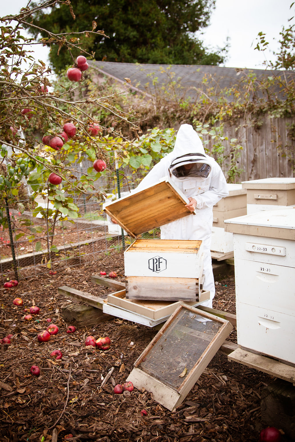 Humboldt has - a lot of natural beauty that inspires us to work outdoors, and bees are the artists of those landscapes.