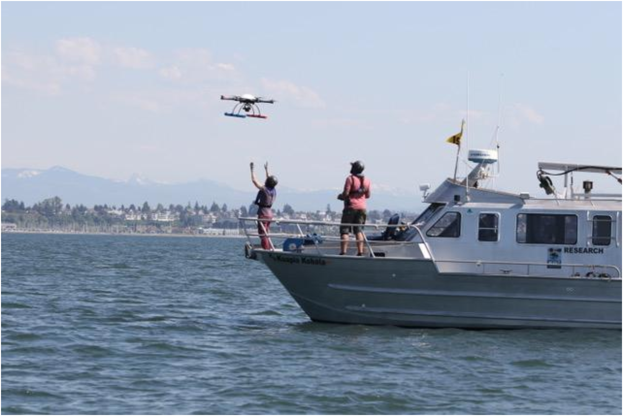 Image of aerial operations using an unmanned octocopter onboard SR3's research vessel Kuapio Kohola. Dr. Holly Fearnbach is shown catching an octocopter flown by Dr. John Durban (NOAA) after a successful flight over two gray whales off Everett, WA., during a collaborative project with Cascadia Research Collective (CRC). Image by John Calambokidis (CRC).