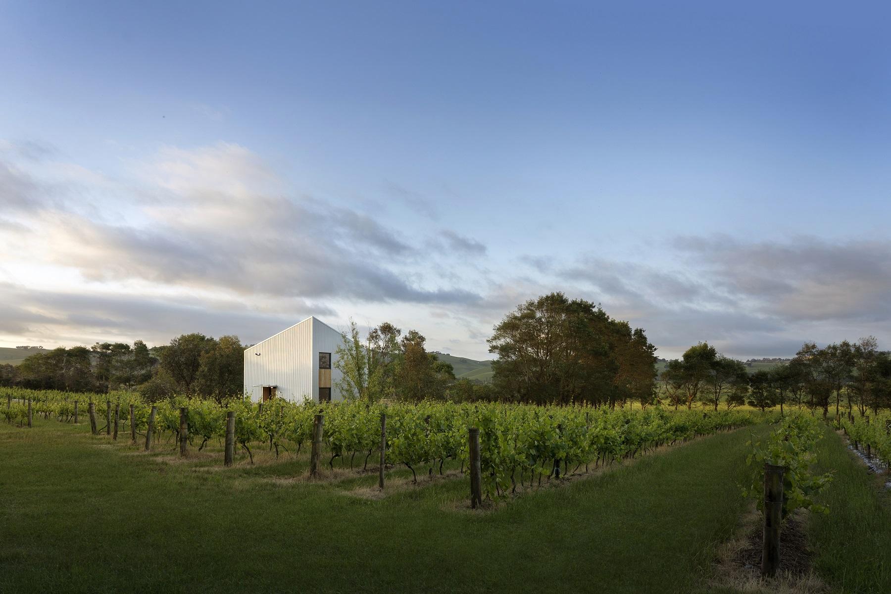 passive+house+passivhaus+biodynamic+vineyard