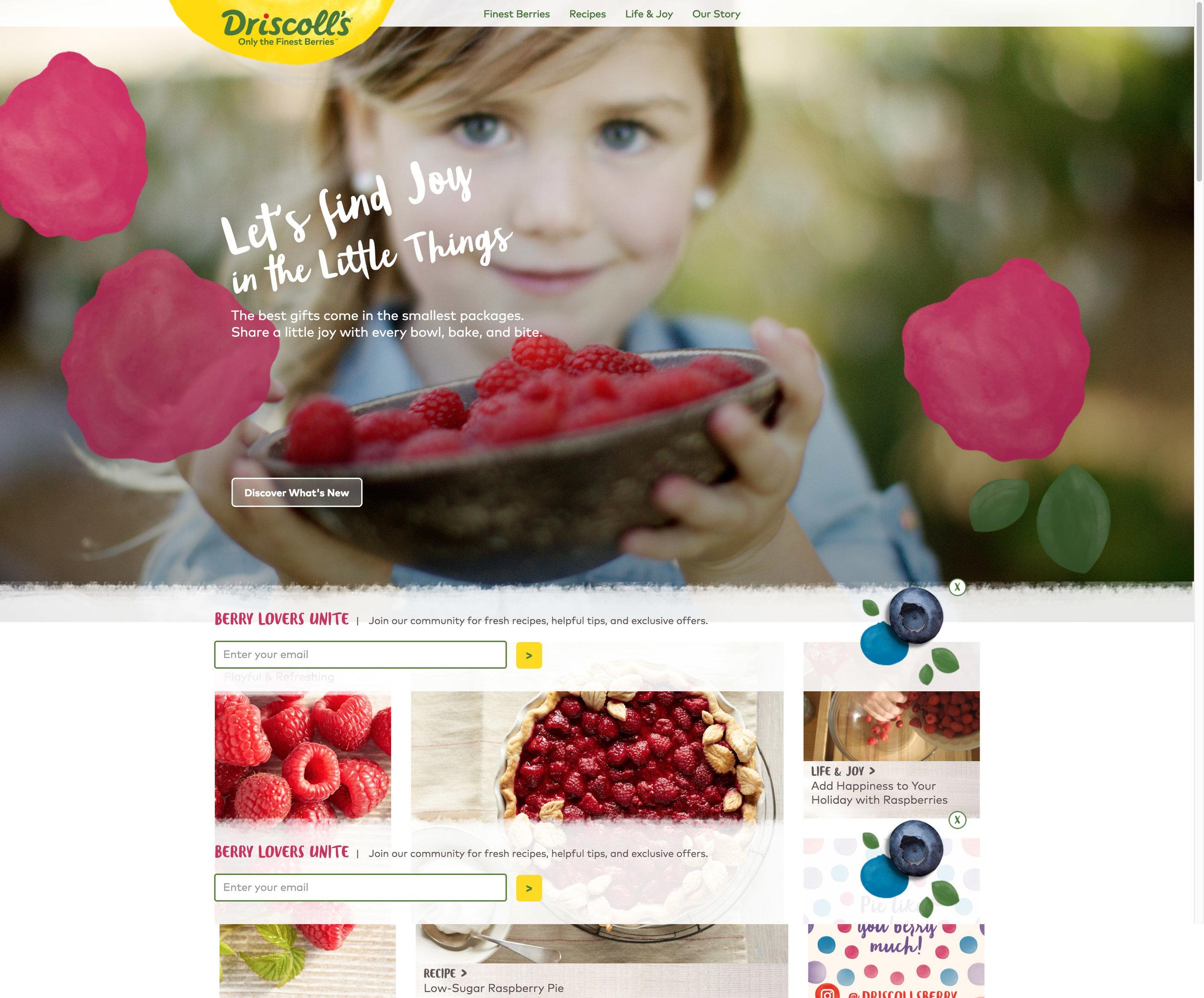 Copy of Driscolls.com