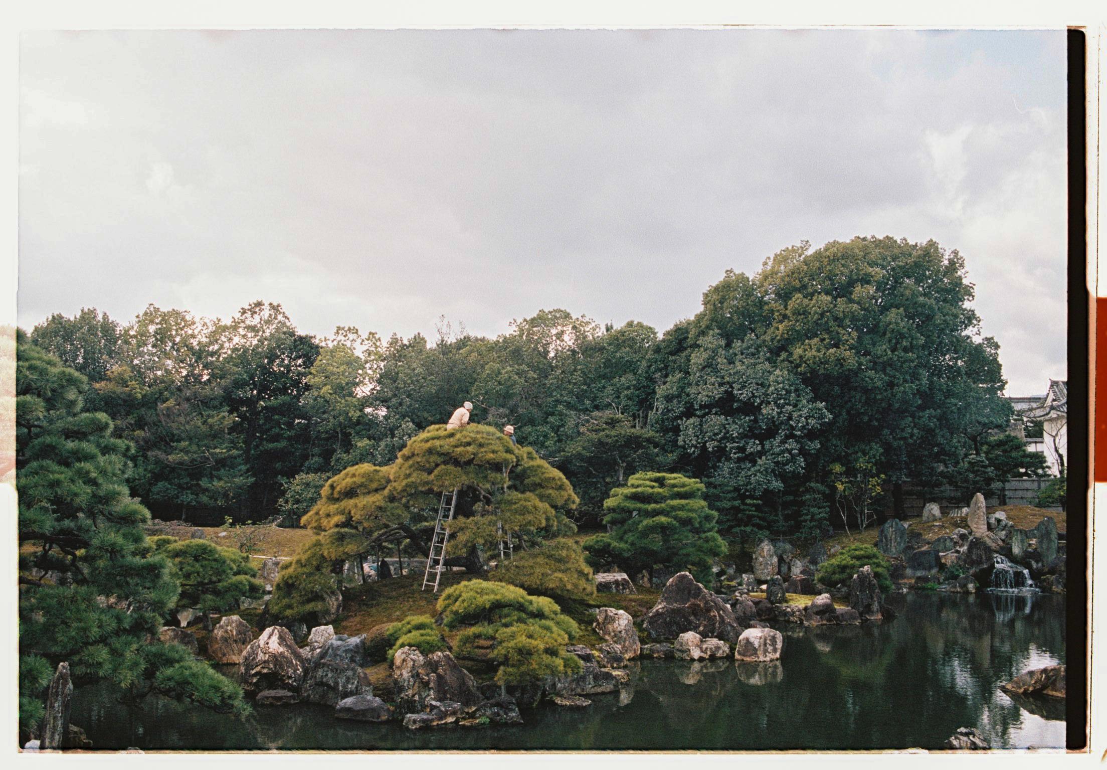 Japan-000011-5.jpg