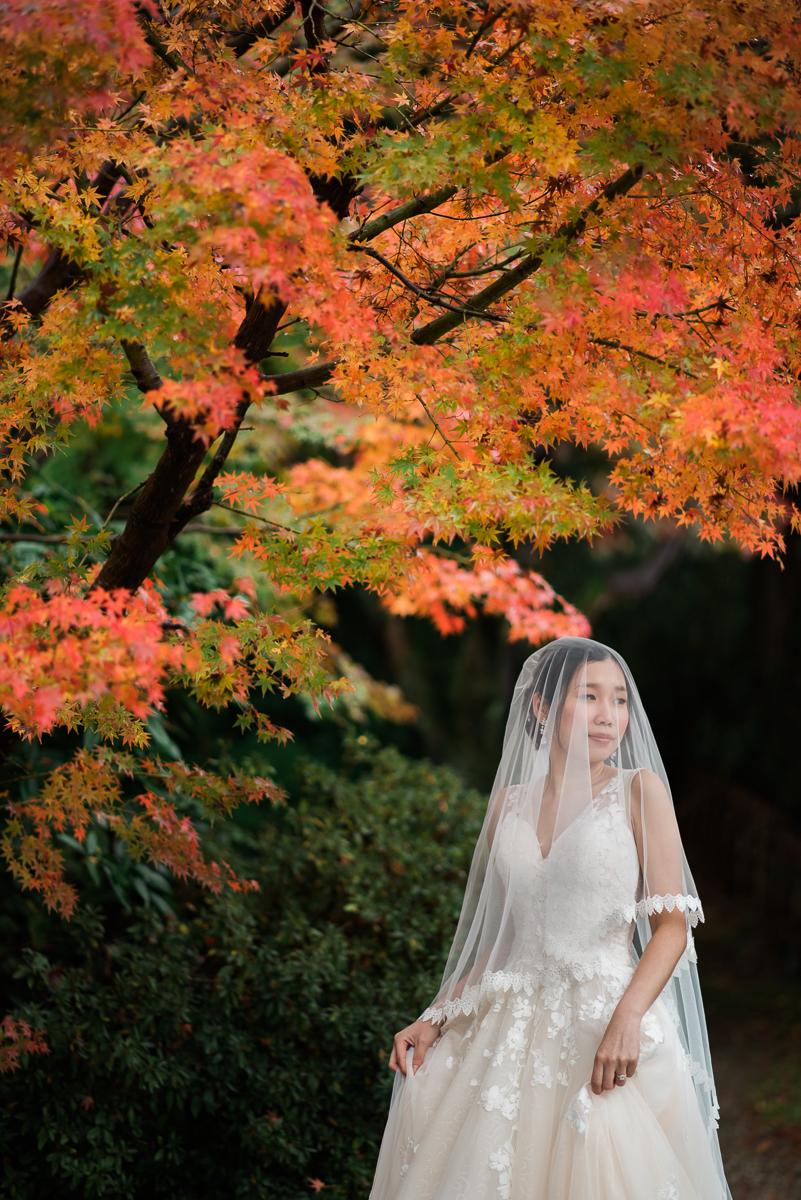 prewedding_Japan_fall-24.jpg
