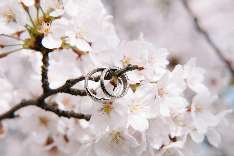 cherry_blossom_prewedding-4.jpg