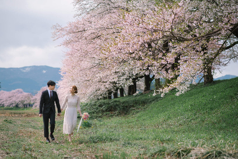 cherry_blossom_prewedding-11.jpg