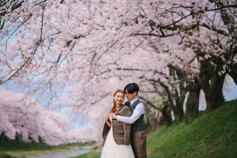 cherry_blossom_prewedding-39.jpg