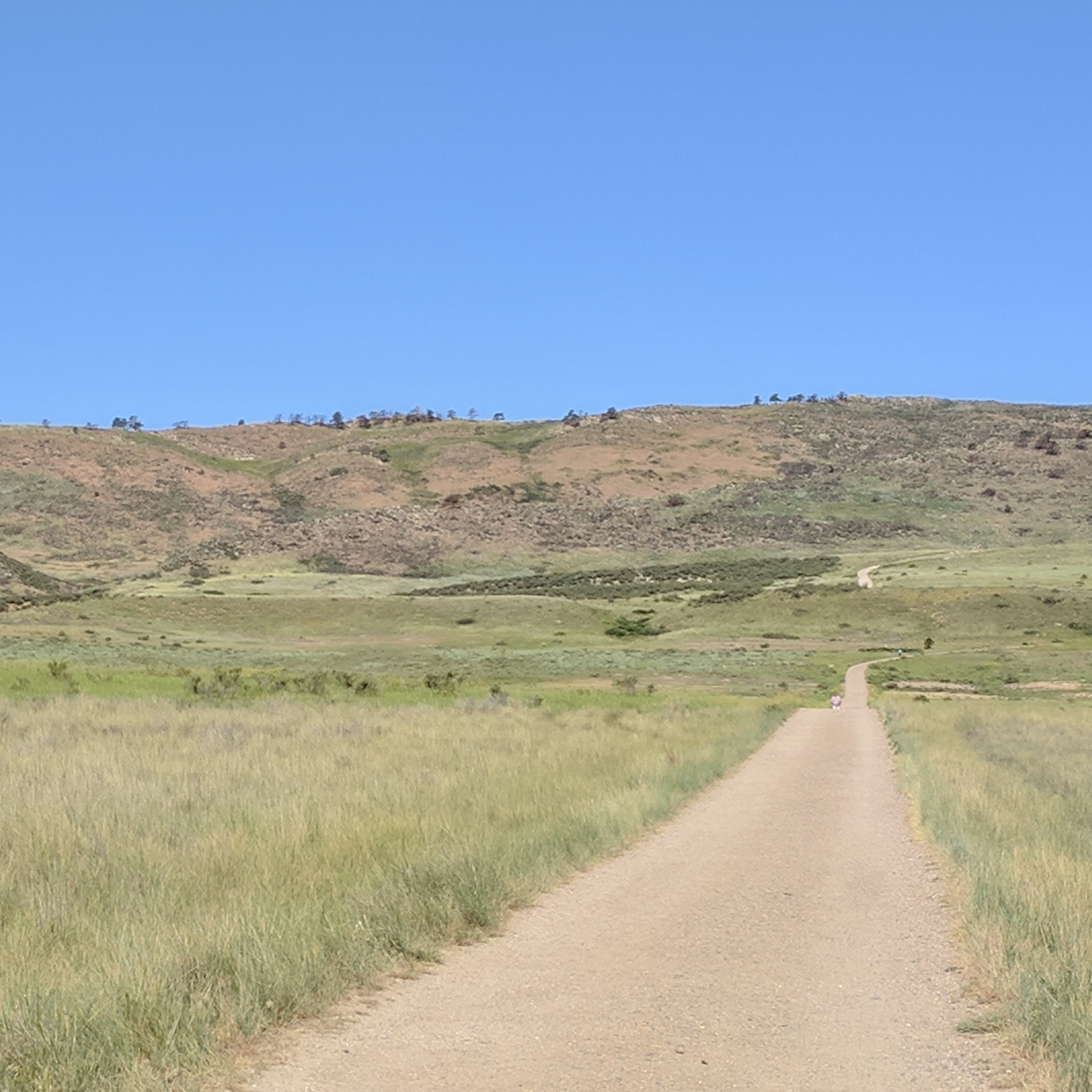 Walk less than five minutes along this path from the parking lot, then listen for the chirps and yips of the prairie dogs.