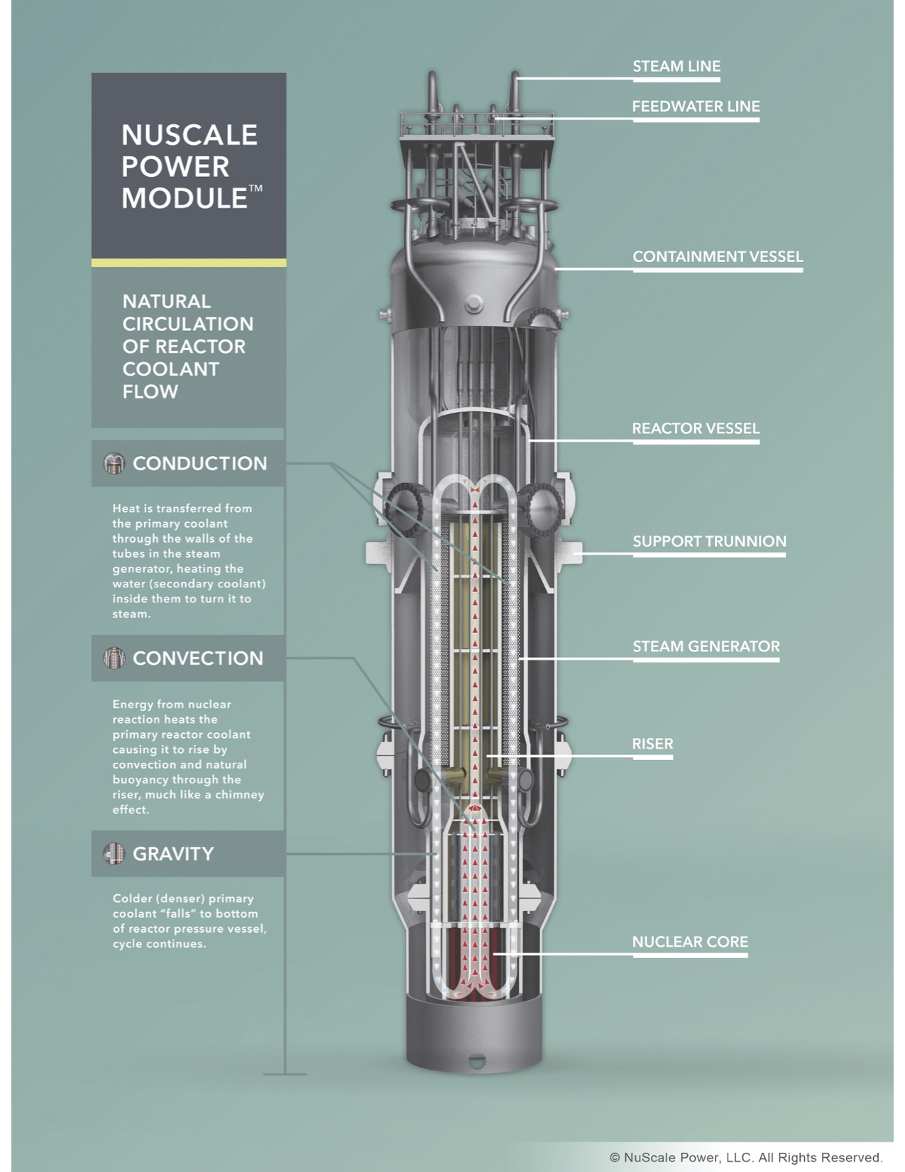 NuScale 50 MWe light water reactor. Passively cooled SMR.