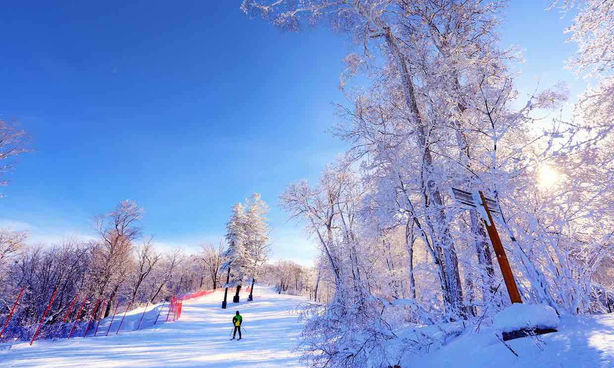 China's Ski Industry Is Set to Soar After Olympic Win
