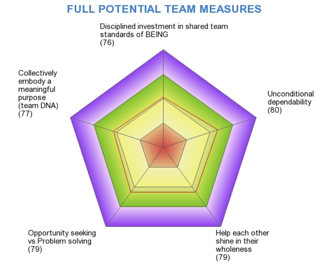 Team Assessment Measures.jpg