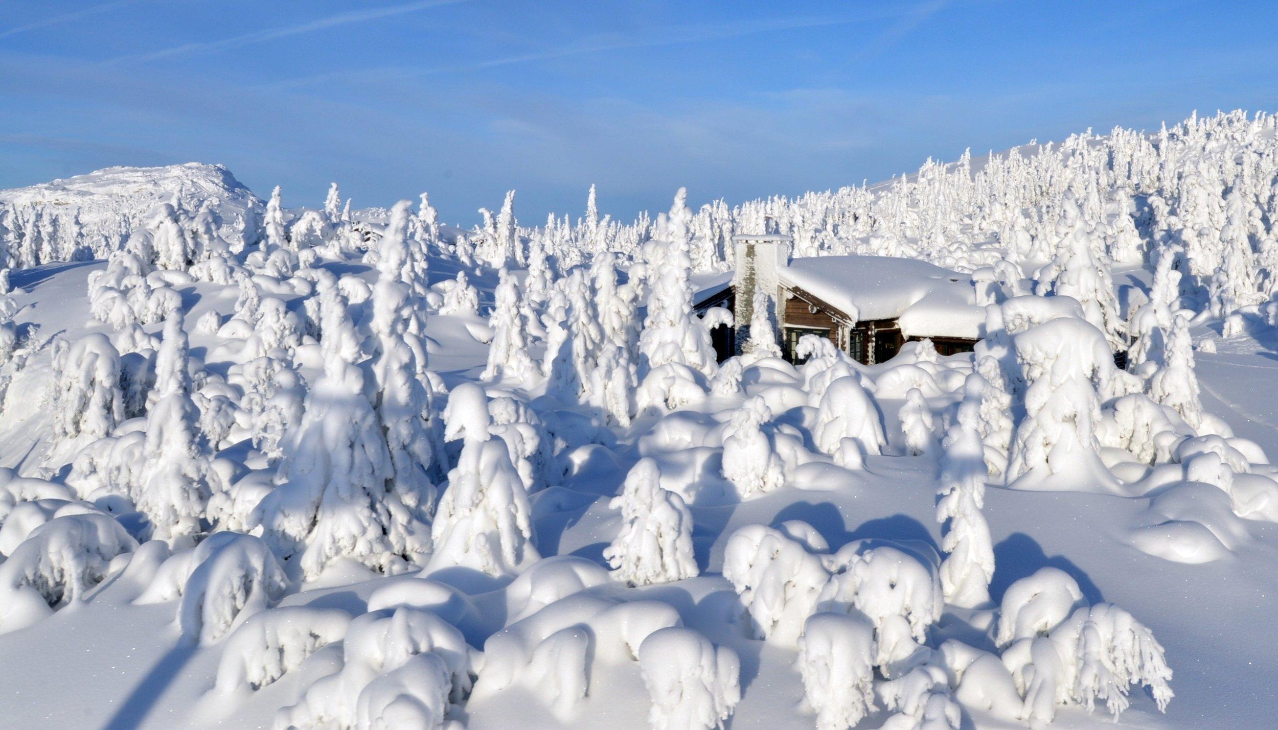 Hytte full an snø