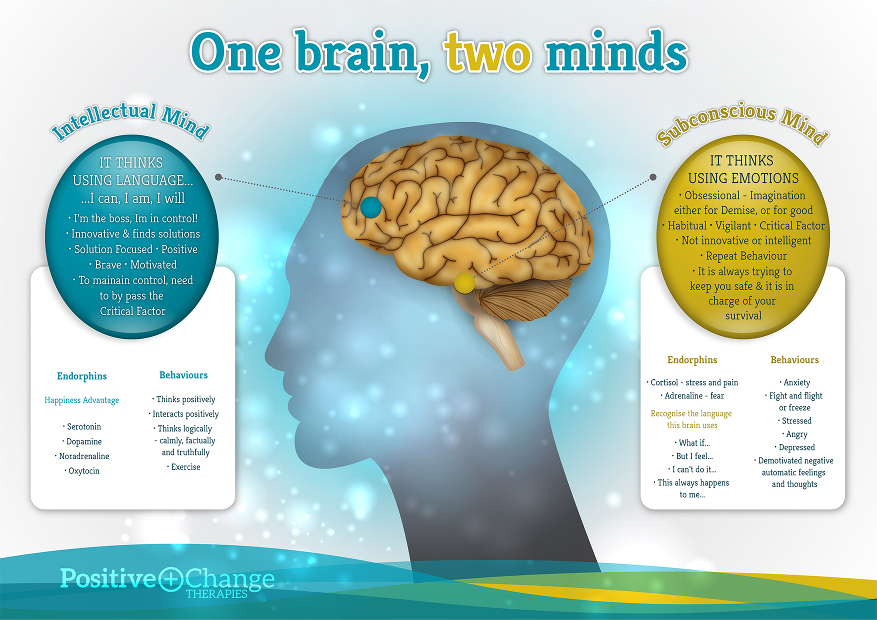 PCT - Your 2 Minds.jpg