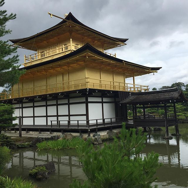 "A famous Japanese says ""Experience the beauties of nature, and in doing so learn about yourself"" .  I've really enjoyed visiting Japan - this has to be my favourite temple : The temple of gold it is majestic and yes I've certainly learnt more about myself. #personalgrowth"