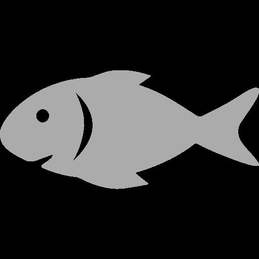 raw-fish.png