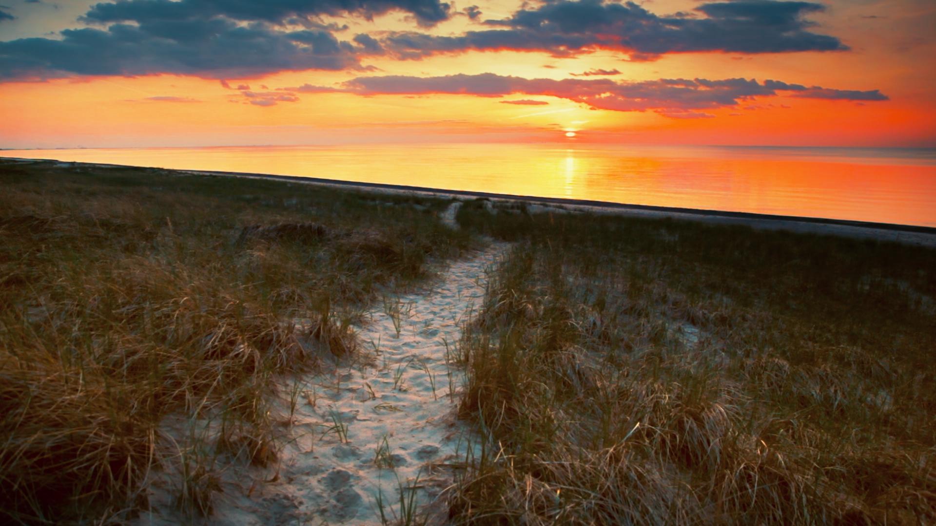 Beach_Path_After.jpg