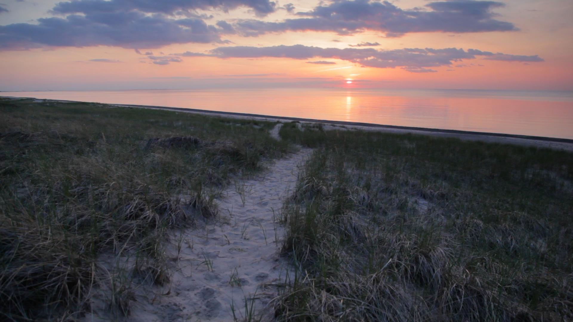 Beach_Path_B4.jpg