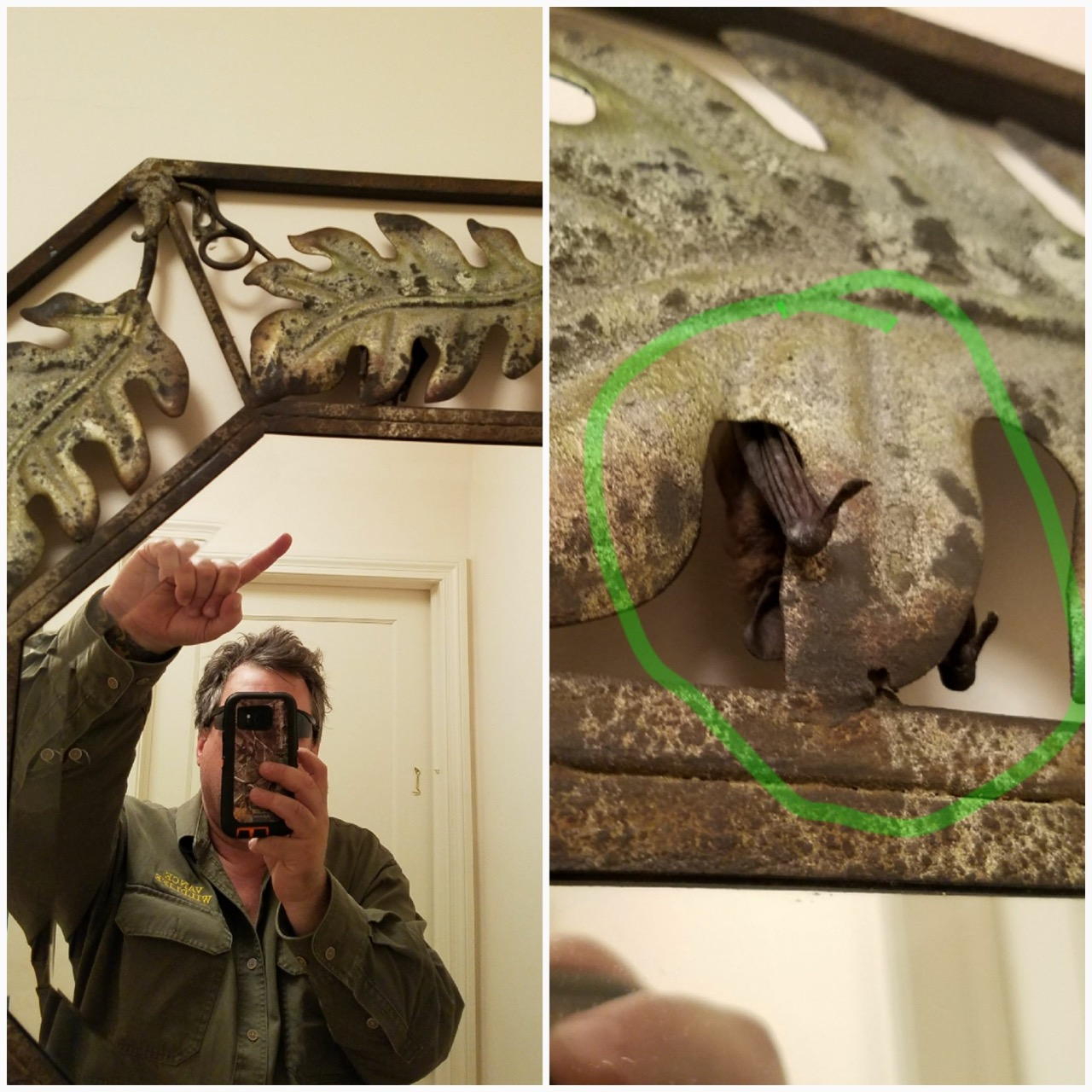bat mirror.jpg