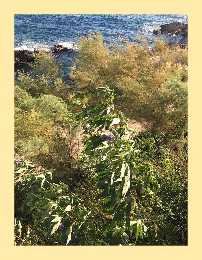 Sidewalk to the Sea in Mallorca