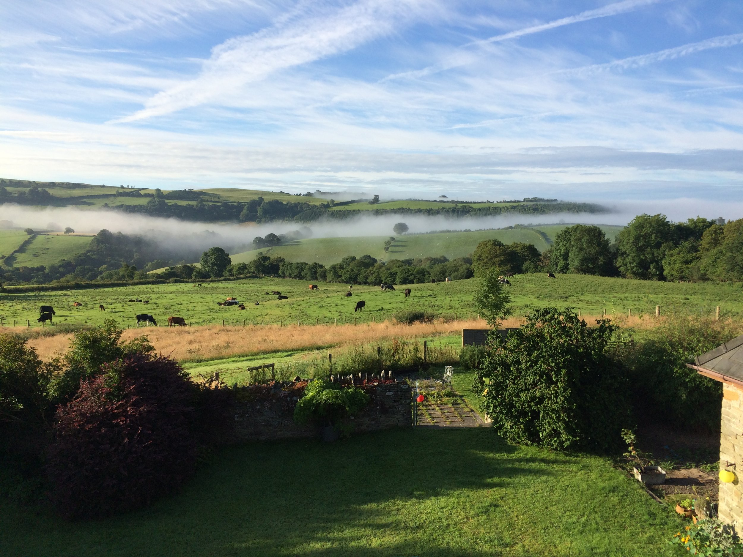 Early morning mist in the valley.