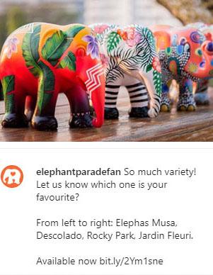 elephant-parade-rio-lu-mori-elephas-musa-insta-1.jpg