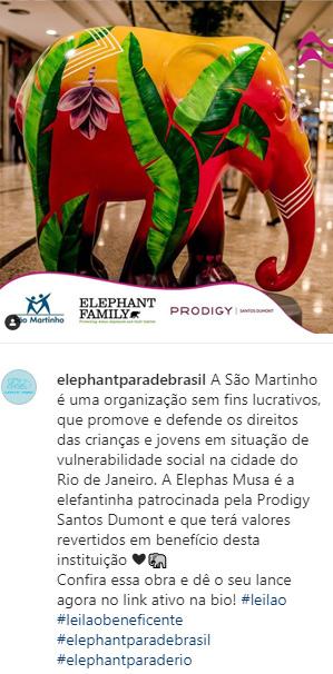 elephant-parade-rio-lu-mori-elephas-musa-insta-4.jpg