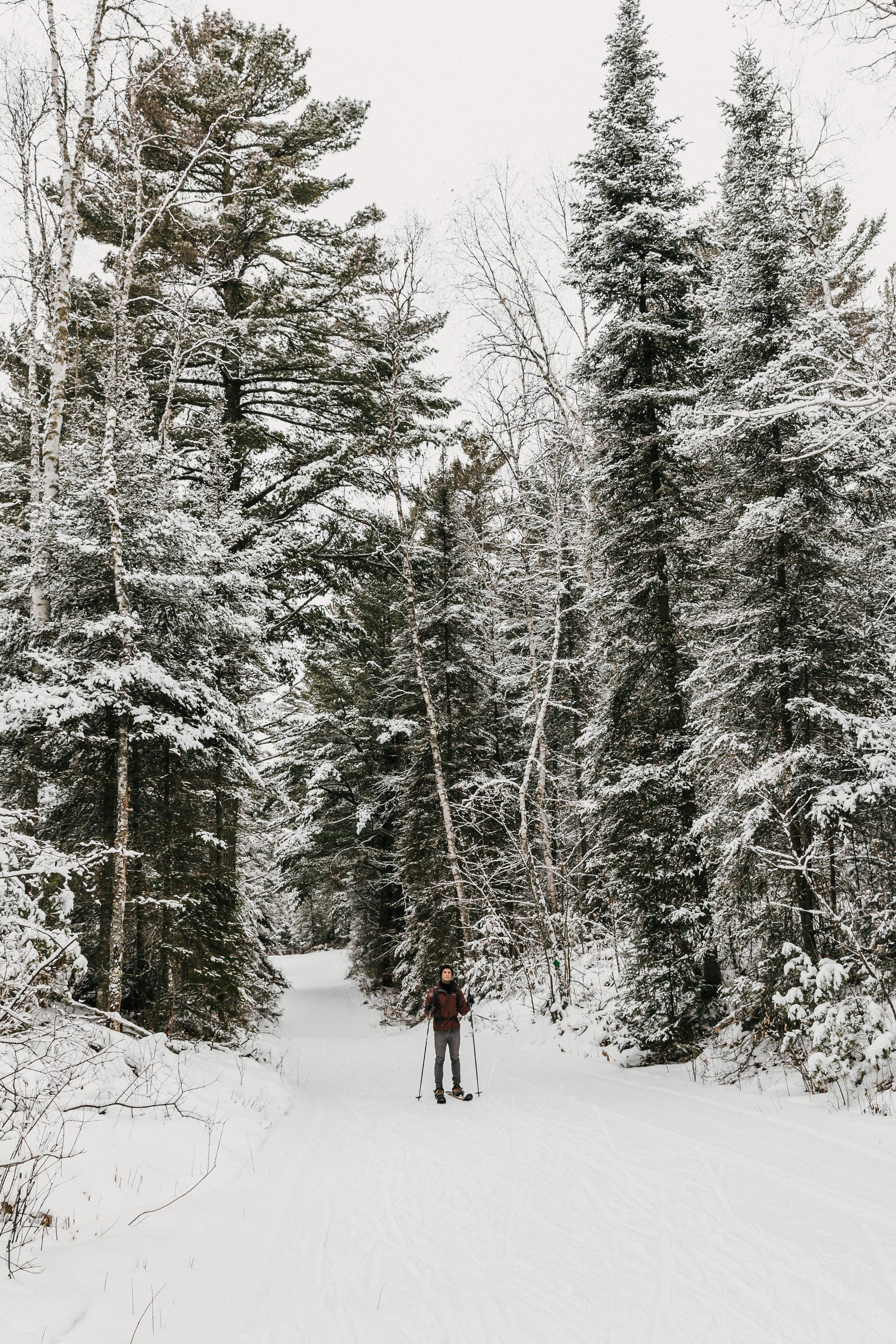 Winter 2018-46.jpg