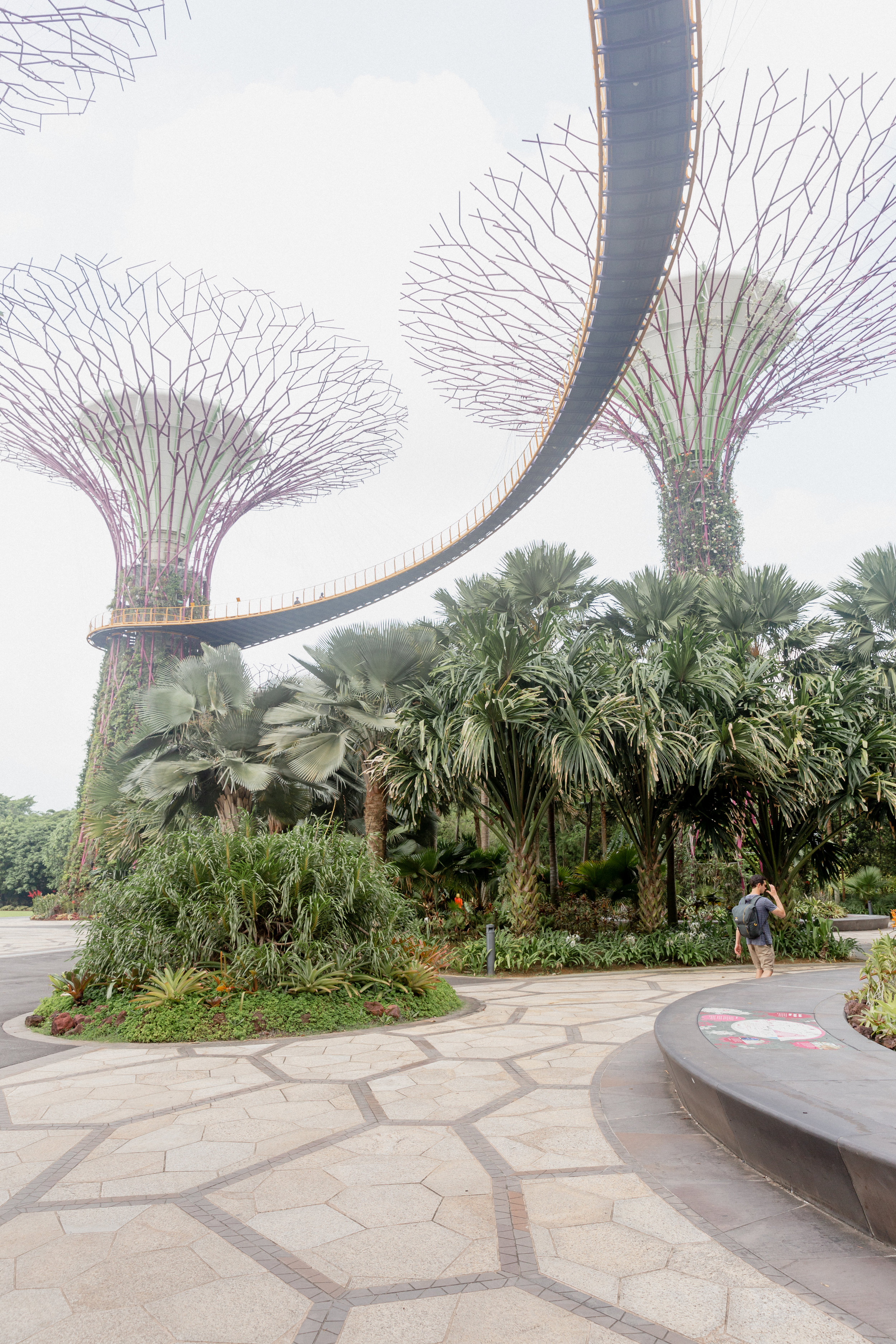 Singapore-12.jpg