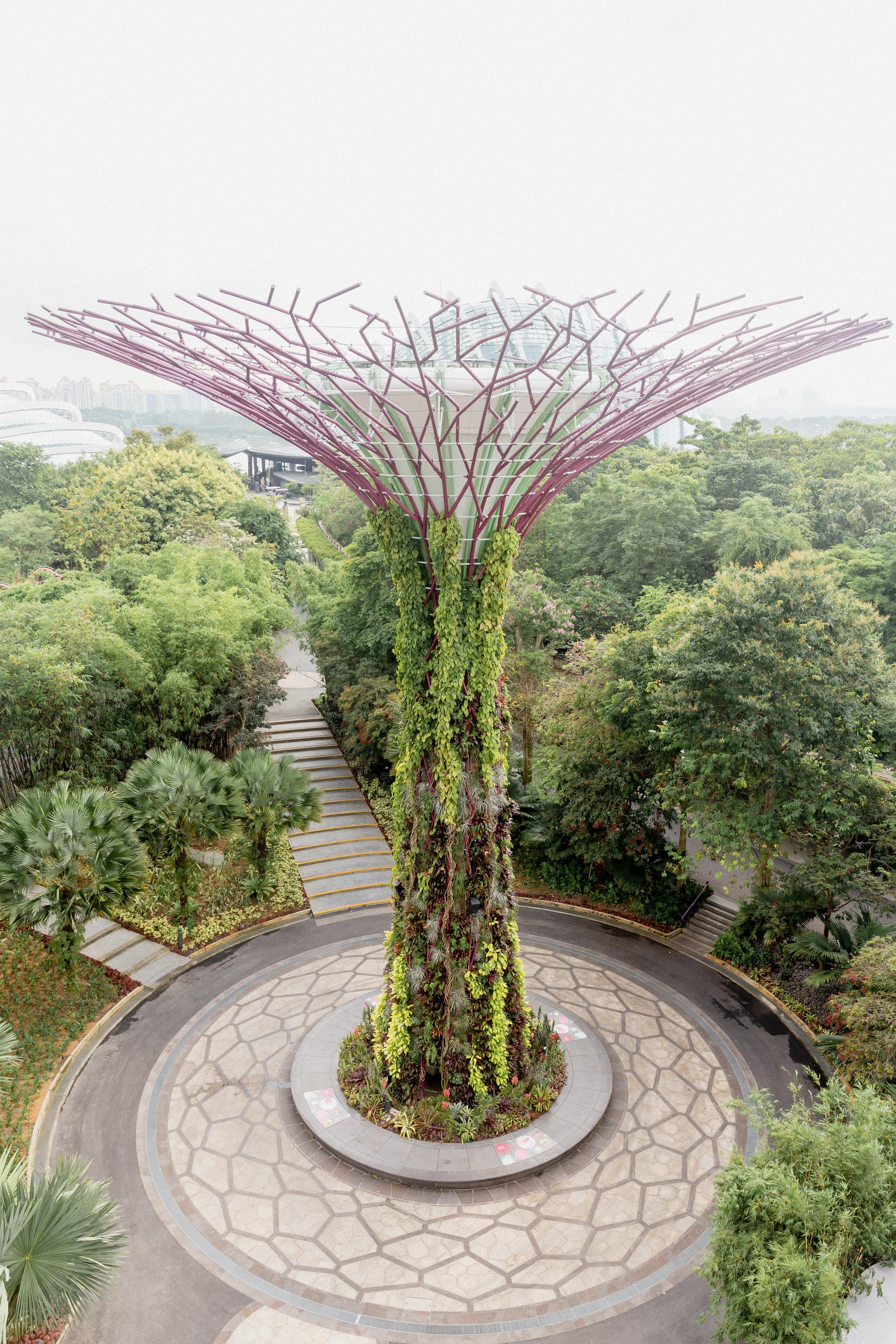 Singapore-18.jpg