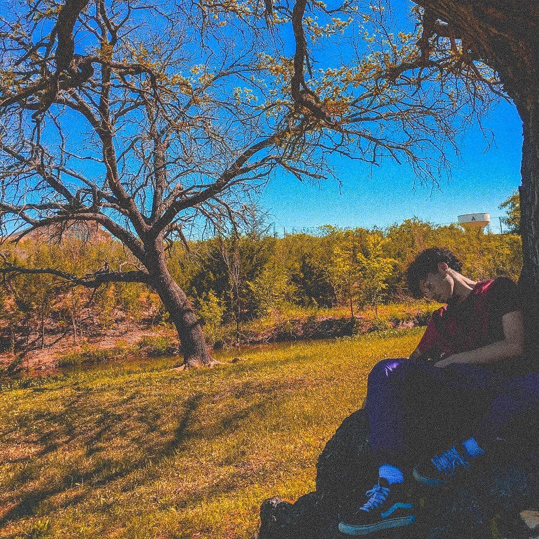 In the garden of Eden.jpg