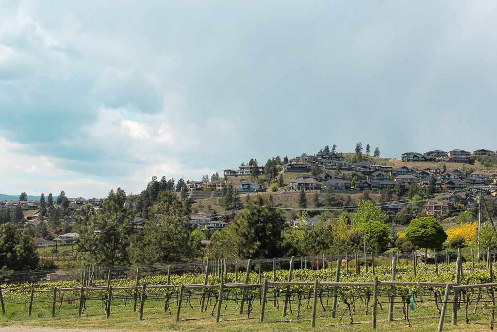 Kelowna winery tour.jpg
