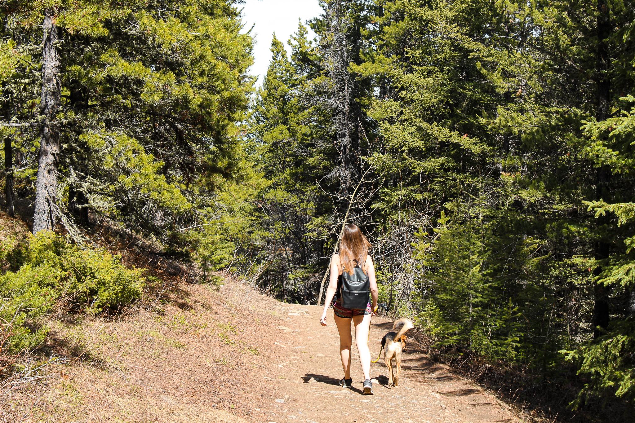 Prairie View Trail Jill Clark hiking.jpg