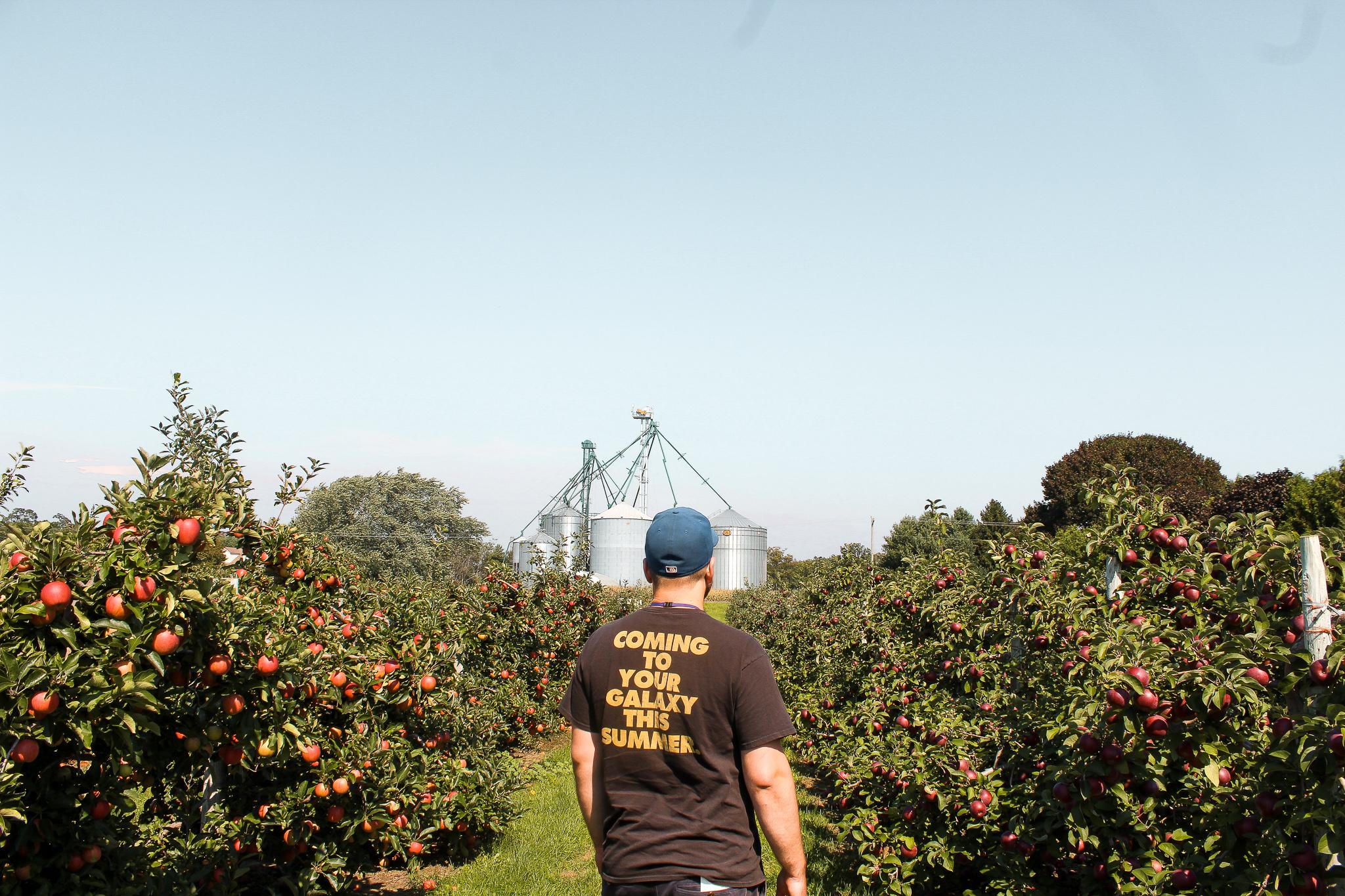 Fall things apple picking (2).jpg