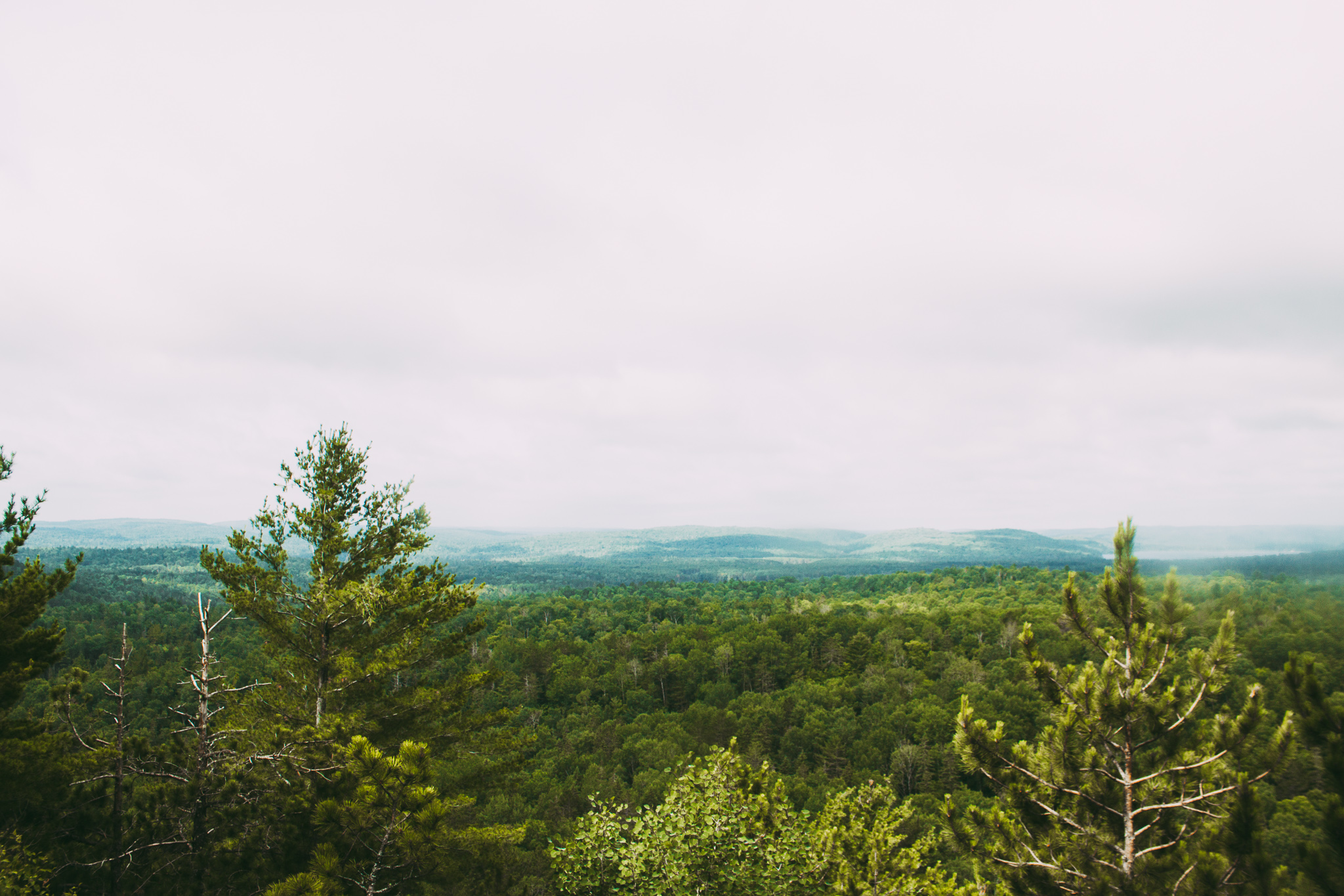 View from Lookout in Algonquin Park