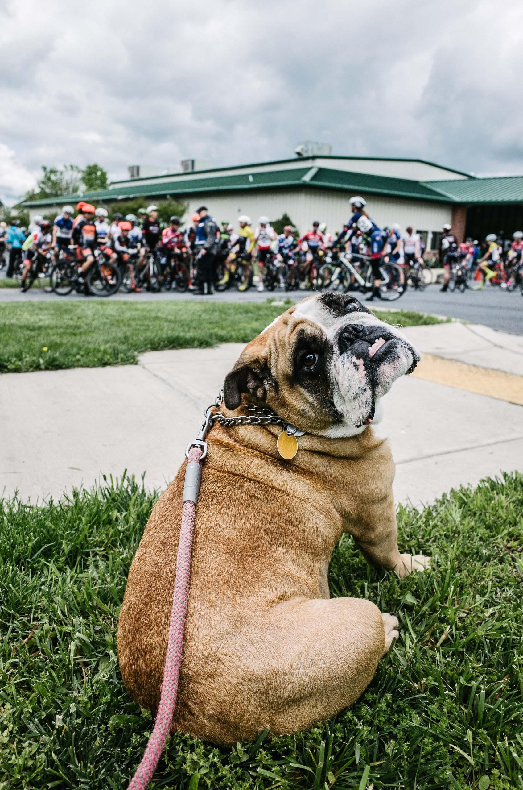 2016-05-07 - Poolesville Road Race-2000.jpg