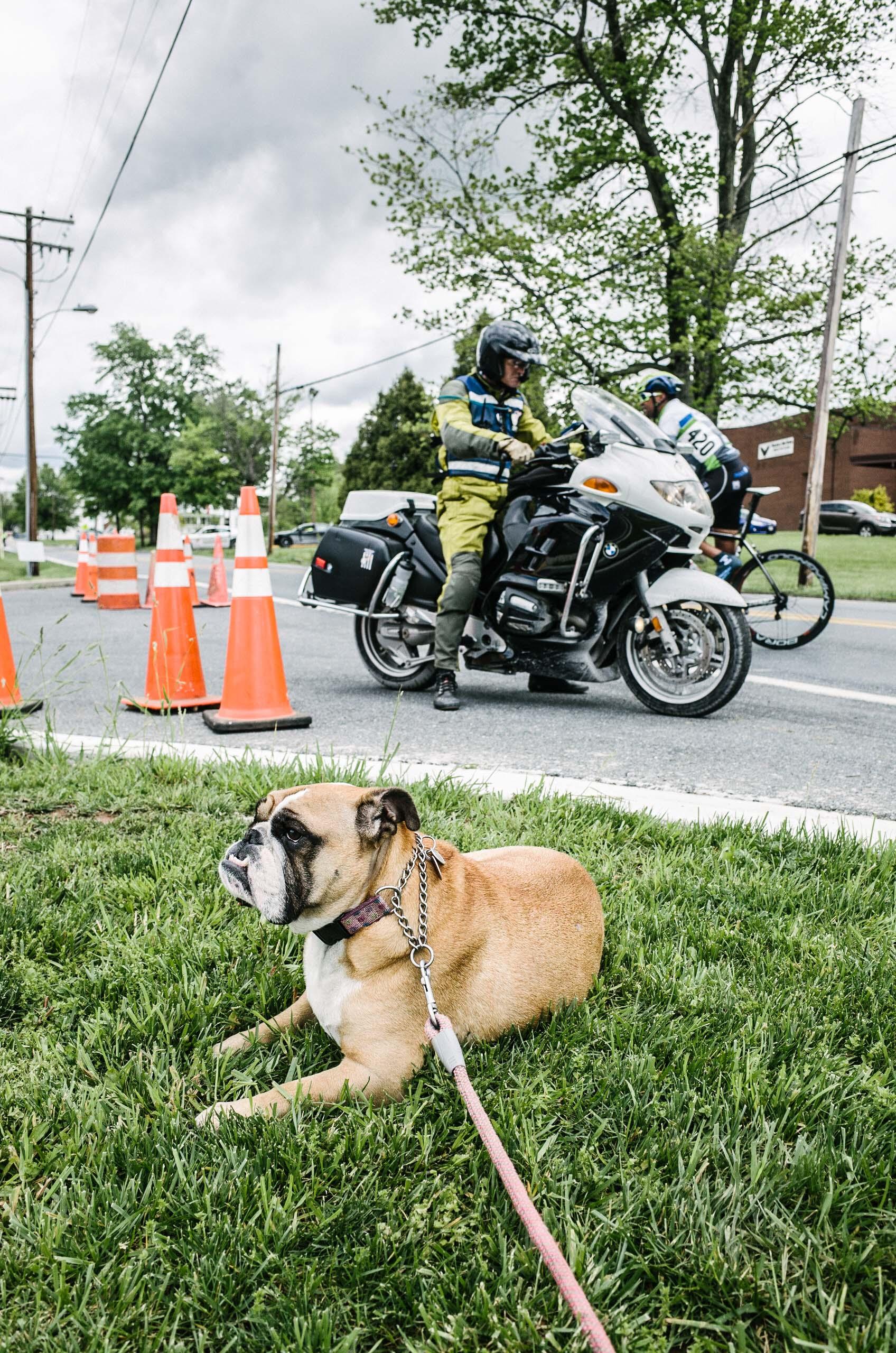2016-05-07 - Poolesville Road Race-2003.jpg