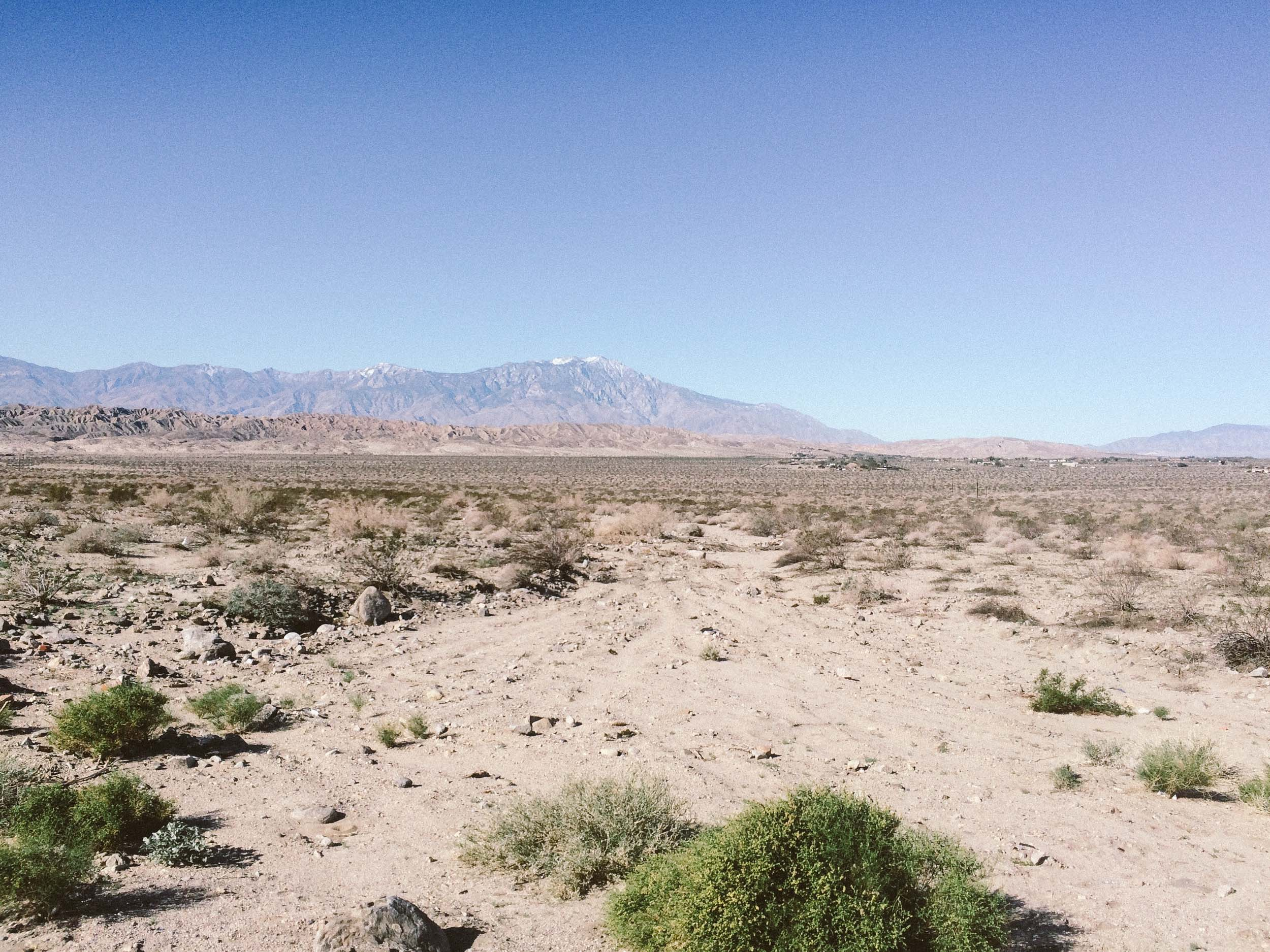 Richard Scudney in Palm Springs-4001.jpg