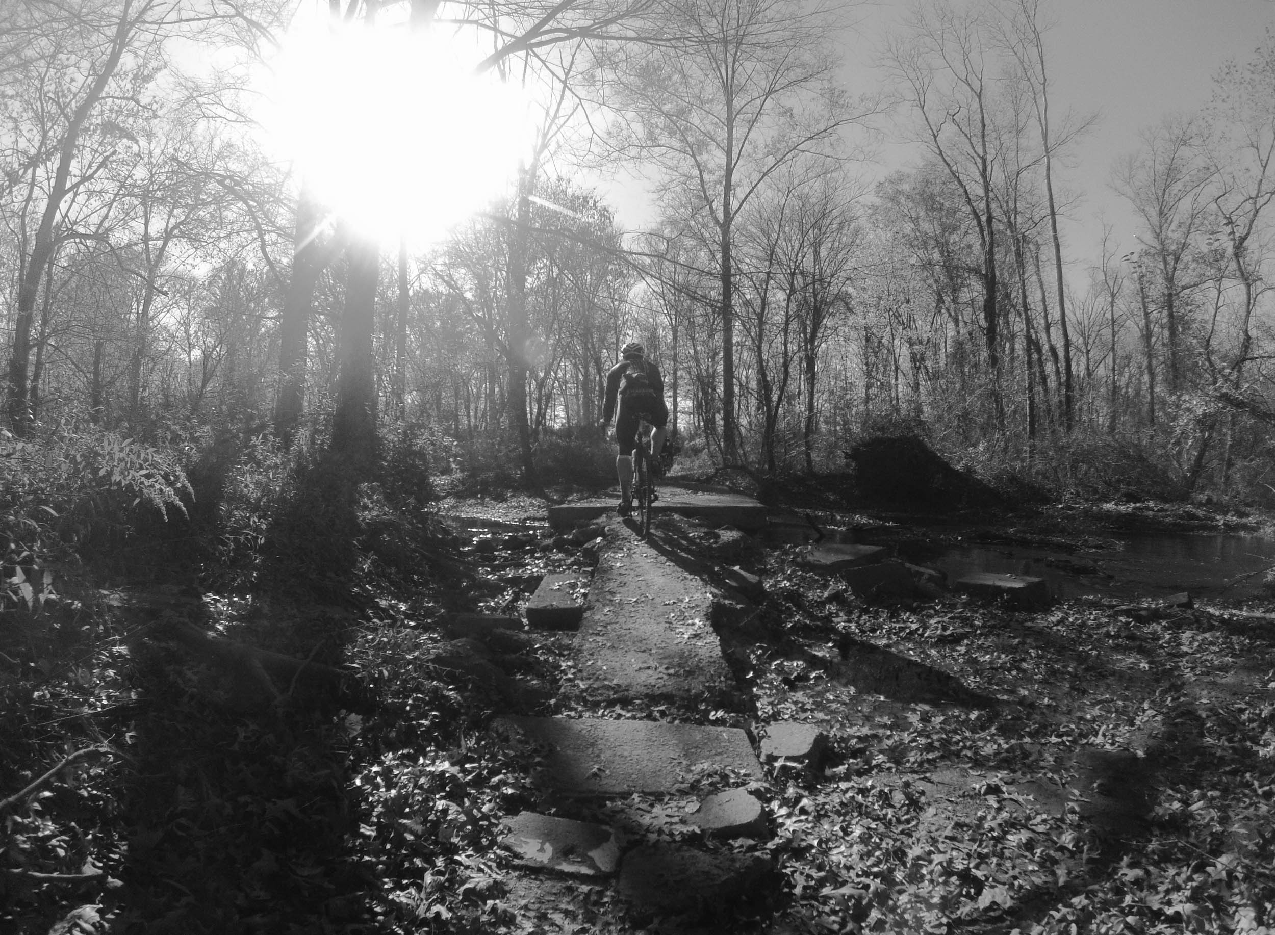 Six-Mile-Mountain-Biking-1005.jpg
