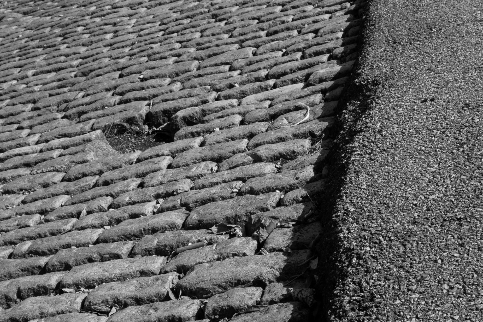 St-Louis-Bicycling-Riverview-Trail-5-1850x1233.jpg