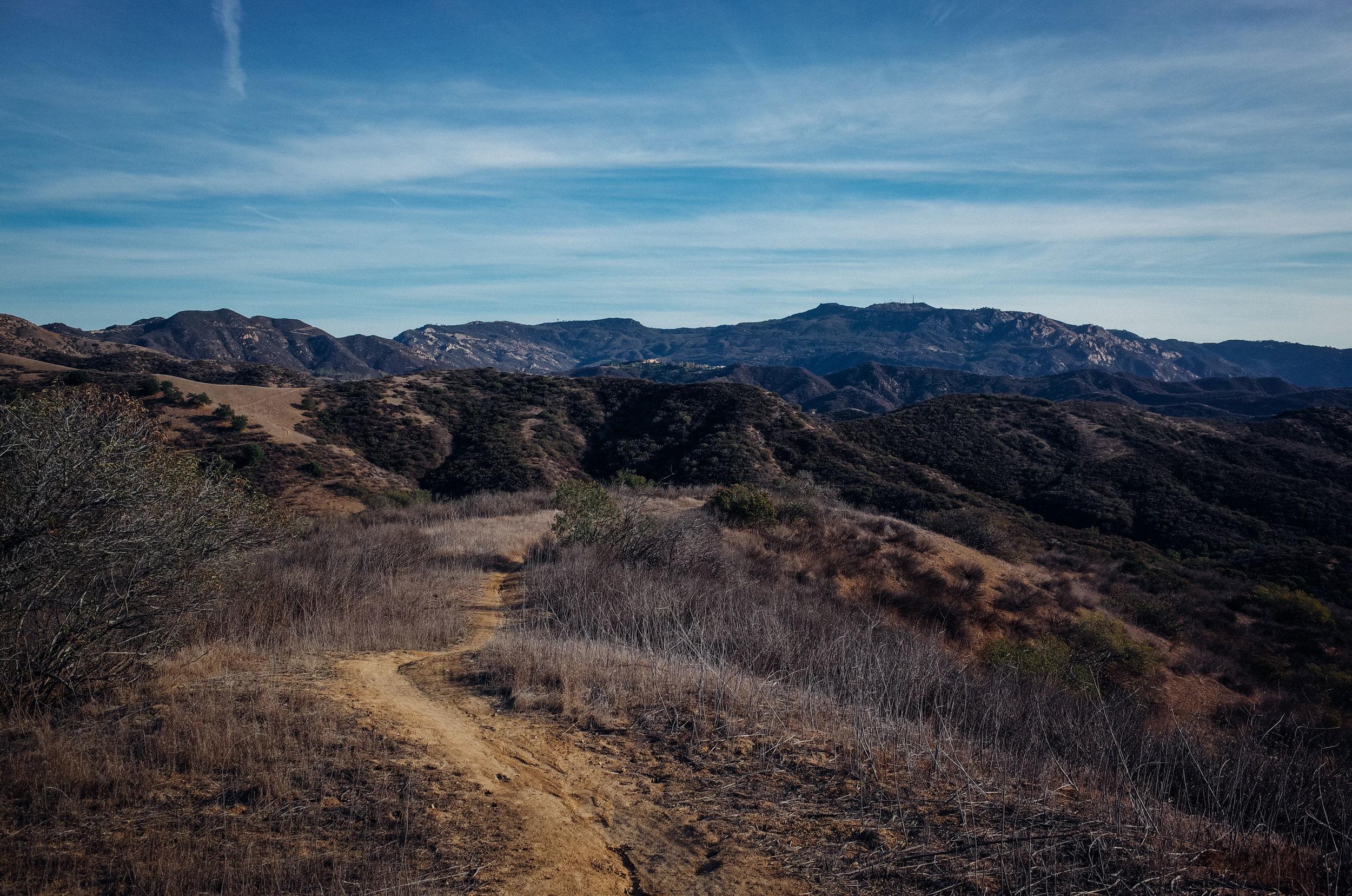 Photo Rhetoric - California in November-1076.jpg