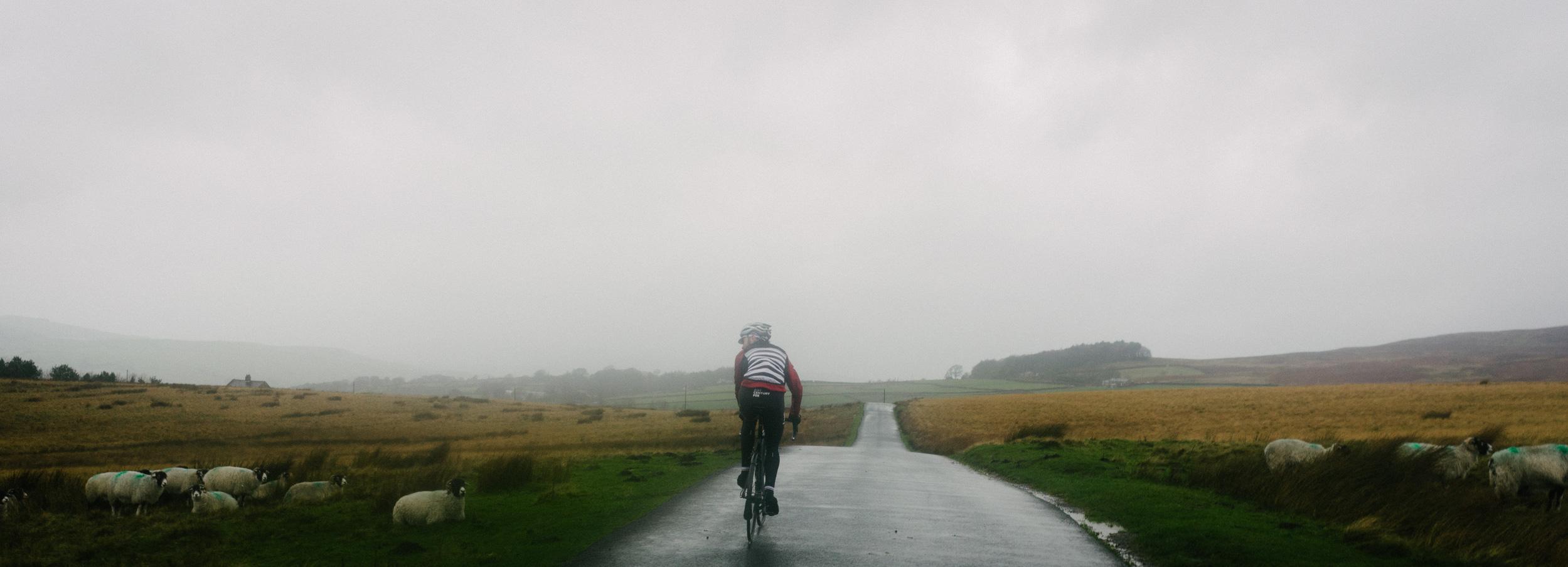 Mountain Biking in Wales-1002.jpg