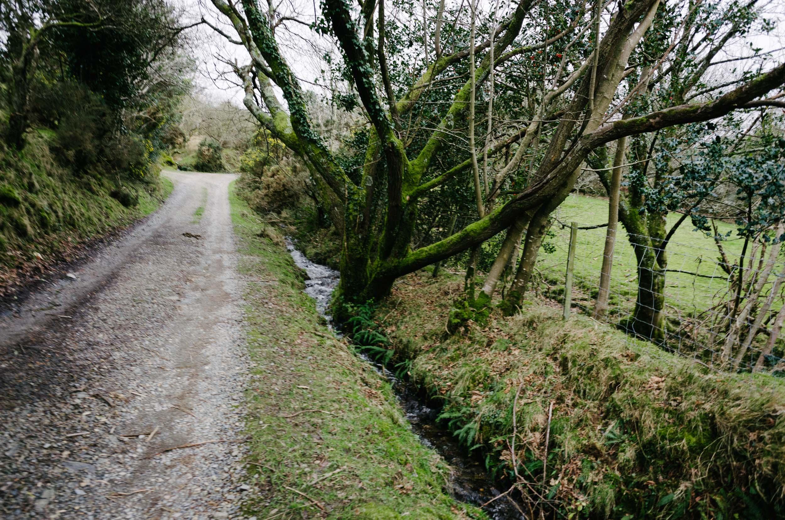 Mountain Biking in Wales-1016.jpg